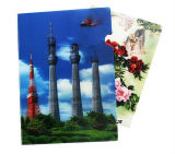 Wholesale Decorative 3D PP Clear File Folders