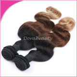 Grade 5A Muti Colors Brazilian Virgin Hair Extension