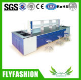 High Quality Chemical Lab Table Laboratory Equipment (LT-05)