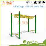 Outdoor Gym Equipment for Amusement Park (MT/OP/GYM1)