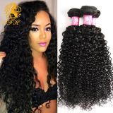 100% Kinky Curly Virgin Hair Human Hair Tfh-1001