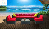 Sofa Outdoor Rattan Furniture with Chair Table