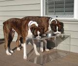 Hot Sale Customized Acrylic Dog Bowl Stand