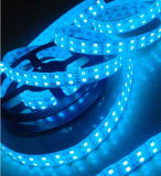 CE EMC LVD RoHS Two Years Warranty, LED Flexible Double Rows SMD 5050 Strip Light