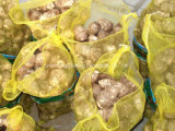 High Quality New Crop Taro for Exporting