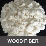 Wall Putty Lime Coat Wood Fiber