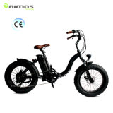 Beach Style Snow Electric Bike with 750W Bafang Motor
