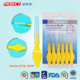Perfect 6in1 OEM Inter Dental Brush/Toothbrush