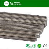 Ss304 Ss316 Stainless Steel Thread Rod Thread Bar (DIN975)