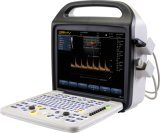Bcu30 Ultrasound Chinese Medical Equipment Medical Apparatus and Instruments