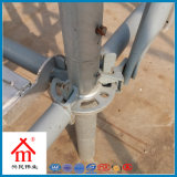 Hot Dip Galvanized / Electrophoretic Painting/Painted Steel Ringlock Scaffolding Props