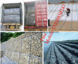 China Manufacturer of Stone Cage Gabion Basket/ Galvanized Gabion Basket (XM-7)