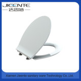 Bathroom Accessory Soft Close Quick Release Toilet Seat