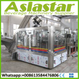2500bph Customized Automatic Glass Bottled Beer Packing Machine Producing Line