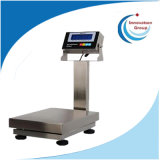 China Wholesale Low Price 300X300mm~600X800mm Waterproof Stainless Steel Bench Scale