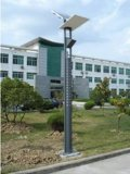 Newly Solar Garden Lantern Suitable for Garden, Lawn, Campus