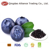 Top Quality Frozen Blueberry with Good Price