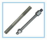Thread Rods with Zinc Plated/Galvanized (DIN975/976)