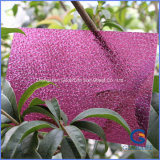 UV Coating High Quality Embossed Polycarbonate PC Sheet