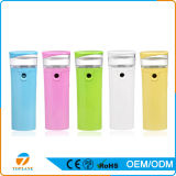 Nano Mist Facial Sprayer USB Rechargeable Mini Portable Facial Steamer