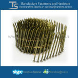 Q195 Steel Decking Pallet Coil Nails