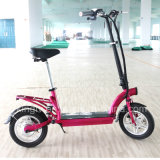 Full Carbon Frame Two Alloy Wheel Electric Folding Scooter