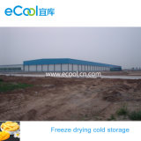 High Capacity Large Size Super Low Temperature Cold Storage for Freeze Drying Food
