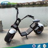 1200W Electric Scooter in Factory Price with Ce RoHS EEC