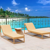 Hotel Swimming Pool Furniture Rattan Sun Bed (T530)
