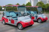 Wholesale 6 Seater Electric Sightseeing Bus with Powerful Motor and Affordable Price