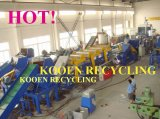 PET Bottle Flakes Recycling Machine/Pet Bottle Recycling