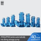 Hot Sale High Quality Qw Automatic Stirring Submersible Electric Sewage Pump