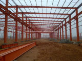 Hot DIP Galvanized Steel Structure Building