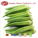 IQF Frozen Okra New Crop