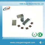 Great Samarium Cobalt SmCo Magnet