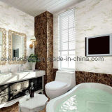 60X60cm Full Glazed Porcelain Polished 3D-Inkjet Tile for Bathroom (A0601D)