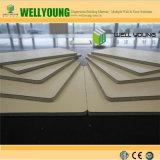 High Pressure Laminate Board / Formica HPL Sheet