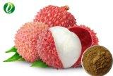 Natural Lychee Extract Powder 50% Polyphenol
