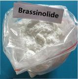 99% Purity Brassinolide as a Plant Growth Regulator 72962-43-7