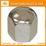 Ss Low-Cost Supply Fastener Hex Cap Nuts DIN917