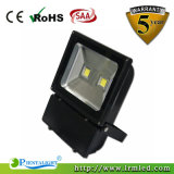 IP65 Bridgelux COB Outdoor Tunnel Garden Light 100W LED Floodlight