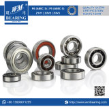 Auto Motorcycle Engine Motor Ceramic Deep Groove Ball Bearing (6305/6205/6005-2RZ)