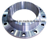 Forged Stainless Steel 900lbs Sch160 Welding Neck Flanges