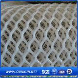Diamand Plastic Mesh for Hot Sale / Plastic Mesh Sales