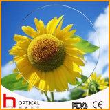 1.499 Single Vision 65mm Optical Lens Hc Tintable