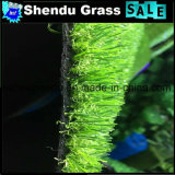 Best Price 20mm Artificial Turf for Garden