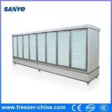 2000L Big Volum Glass Door Display Cabinet for Frozen Foods