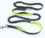 Catalogue for Pet Collar & Leash