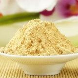China Factory Supply 100% Pure Natural Organic Ginger Extract Powder