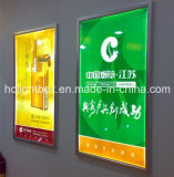 LED Light Box Advertising Displays